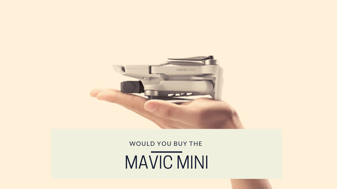 This is an image from the drone photography bible article 'would you buy the mavic mini?'. The image is over a mavic mini sitting in the palm of a hand with the words 'would you buy a mavic mini' overlaid on top.